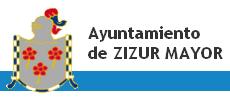 logo_zizur