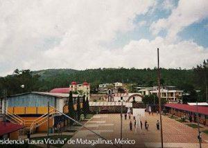 matagallinas