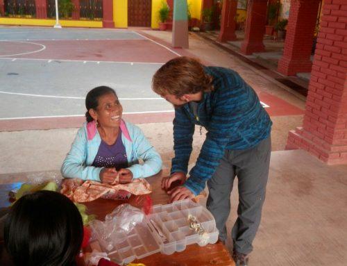 Diarios de un Campo de Trabajo: primera semana en Tepantlali
