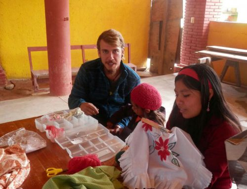 Diarios de un Campo de Trabajo: segunda semana en Tepantlali