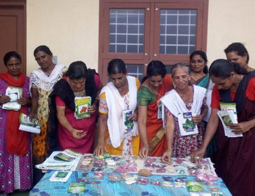 Promoción de la agricultura sostenible y ecológica en Kanakakunnu (India)